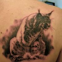 carino lince seduta tatuaggio sulla scapola
