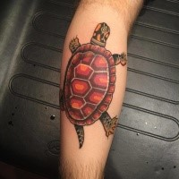 Nette originale farbige kriechende Schildkröte Bein detailliertes Tattoo