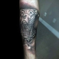 Detailed realism style arm tattoo of dog with chain