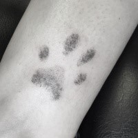 Dot style cool looking small tattoo of animal paw print