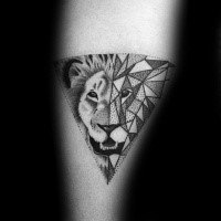 Dot style fantastic looking tattoo of separated lion head