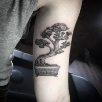 Engraving style black and white biceps tattoo of small bonsai tree