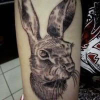 Engraving style black ink arm tattoo of cute rabbit