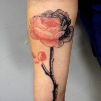 Engraving style colored forearm tattoo of rose flower