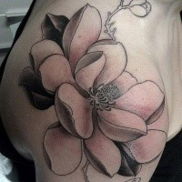 Engraving style colored shoulder tattoo of big lotus flower