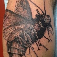 Engraving style detailed biomechanical bee tattoo on leg