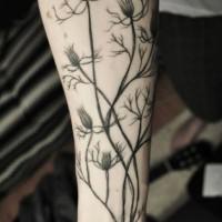 campo di erba tatuaggio mezza manica per uomo