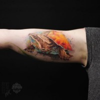 Gorgeous natural looking multicolored biceps tattoo of big turtle