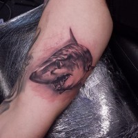 Tatuaje de tiburón negro blanco