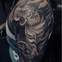 Gray washed shoulder tattoo of tiger with moon