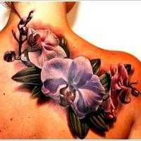 Wunderbare farbintensive Orchideen Tattoo am Schulterblatt