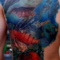 Great colorful shark and marine fishes tattoo on back