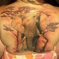grande elefante tatuaggio pieno do schiena