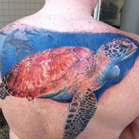 grande tartaruga marina e mondo sott'acqua tatuaggio sulla schiena di uomo