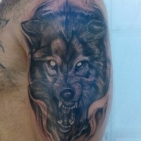 Homemade style colored shoulder tattoo of evil wolf head