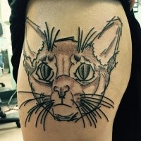 Illustration like colored tattoo of dot style cat face