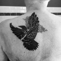 Illustrative style black ink scapular tattoo of dark crow with tree branch