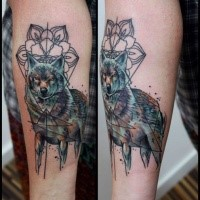 Illustrative style colored arm tattoo of big wolf with ornamental flower