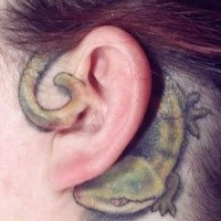 Illustrative style colored behind ear tattoo on small lizard