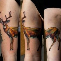 Illustrativer Stil farbiges Bizeps Tattoo mit Hirsch