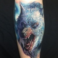 Illustrative style colored forearm tattoo of evil roaring wolf
