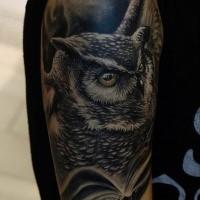 Illustrative style colored shoulder tattoo of amazing owl