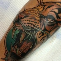 Illustrative style colored tattoo of roaring tiger