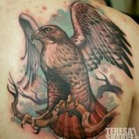 Tatuaje en el omóplato,  águila graciosa en la rama