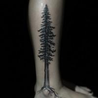 incredibile dipinto inchiostro nero grande albero solitario tatuaggio su gamba