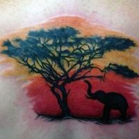 interessante piccolo colorato vita selvaggia con albero e elefante tatuaggio su schiena