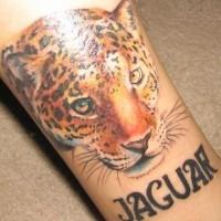 Jaguar color head tattoo design