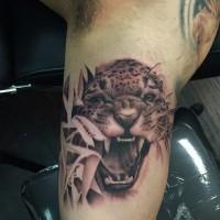 Jaguar growls in grass tattoo