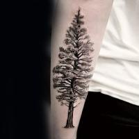 Großes schwarzes und weißes Unterarm Tattoo mit hohem Baum