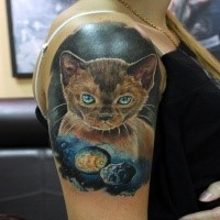 Lifelike for girls style colored shoulder tattoo of cat with planets