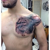 Lifelike very beautiful looking black and gray style chest tattoo of realistic caracal