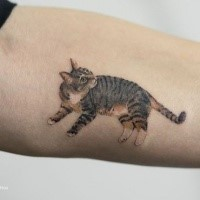 Lifelike very beautiful painted tattoo of realistic cat