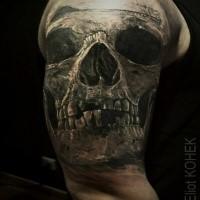 Lifelike very detailed upper arm tattoo of old human skull