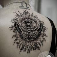 Linework black ink upper back tattoo of butterfly