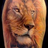 Tatuaggio colorato sul deltoide il leone con la serratura sul collo