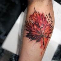 piccolo colorato foglia di acero tatuaggio su gamba