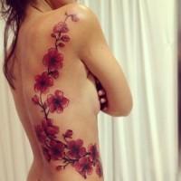 bellissimo ramo di fiori ciliegio tatuaggio sulle costolette