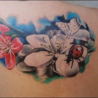 Lovely colorful ladybug and flowers tattoo