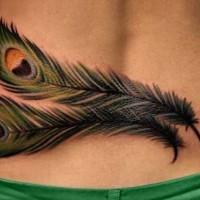 bello colorato piume di pavone tatuaggio per femmina