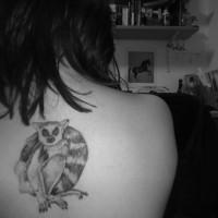 Lovely gray-ink lemur tattoo on back