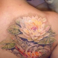 Lovely koi fish and lotus tattoo on shoulder blade