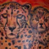 bellissimo leopardo famiglia tatuaggio