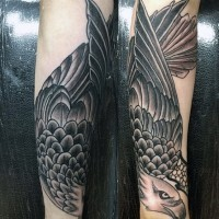 magnifico nero e bianco aquila tatuaggio su braccio