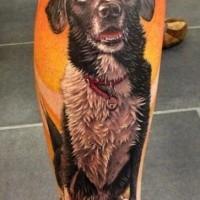 Prächtiges sehr detailliertes naturfarbenes Bein Tattoo mit Porträt des alten Hundes