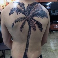 Massive natural looking black ink palm tree tattoo on whole back
