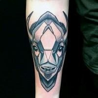 Modern traditional style colored forearm tattoo of typical bull